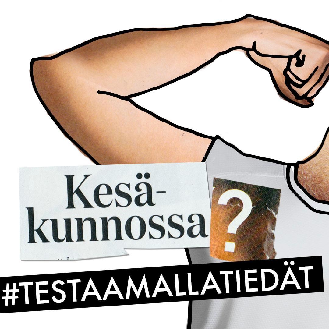 ei ilmaisjakelua tarra suomen seksi